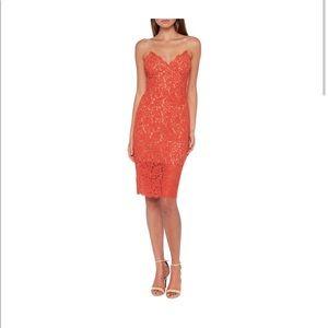 Bardot Paprika lace sheath dress